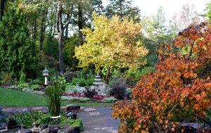 fall-color-fountain