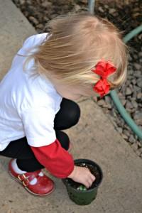 Kids Seeding
