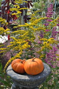 pumpkin urn
