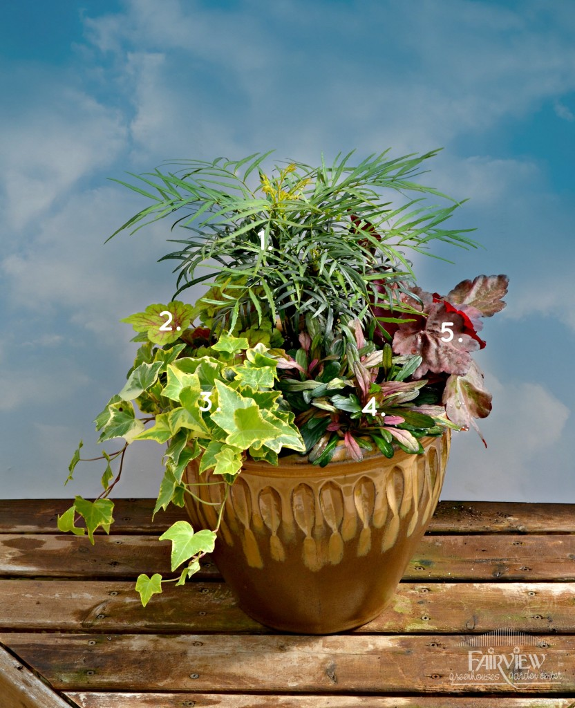 Fall Container Garden for Shade