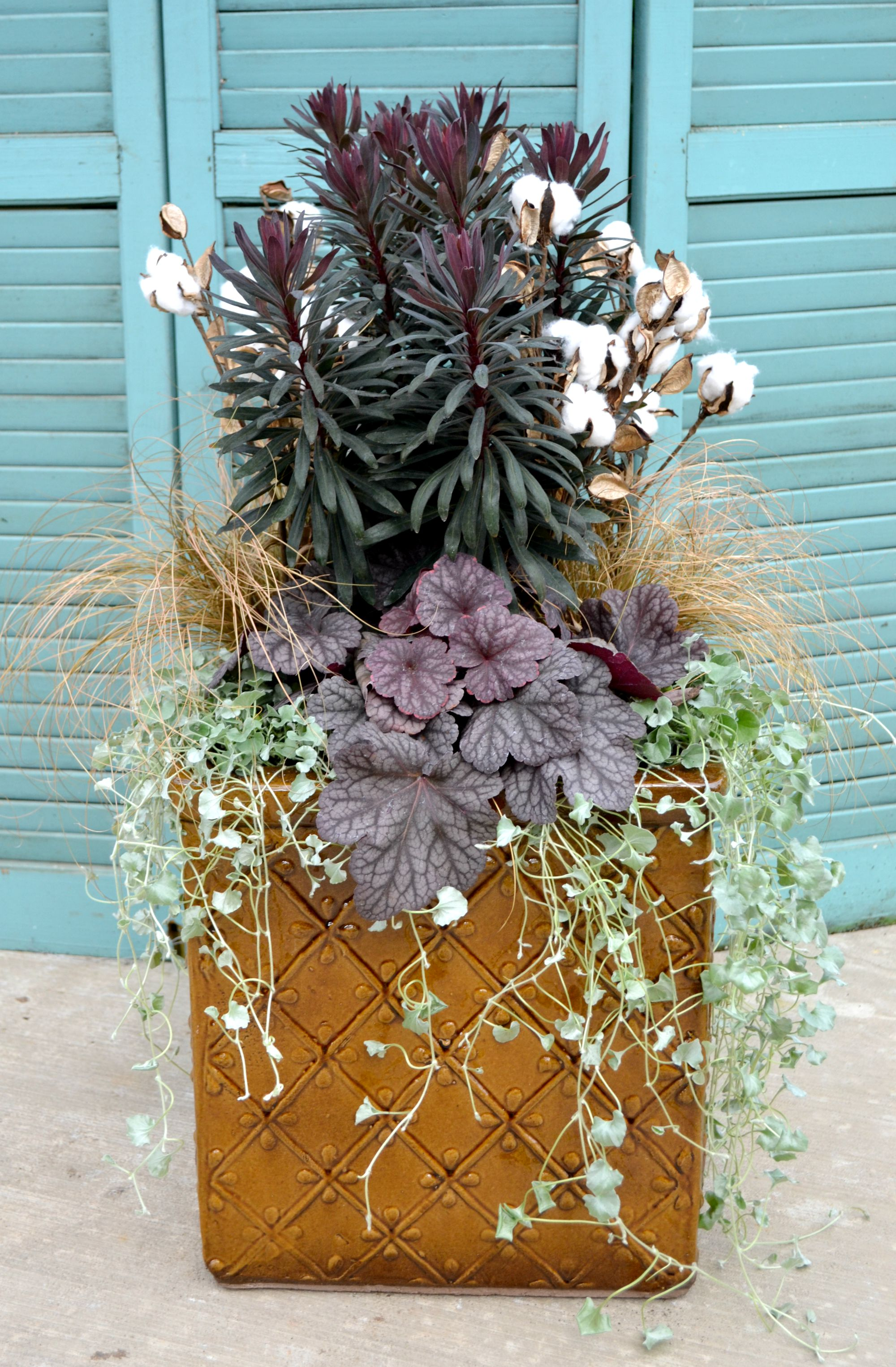 4 Container Garden Ideas Fairview Garden Center