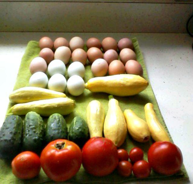 veggie egg harvest