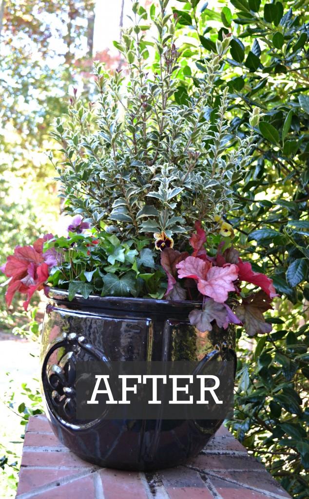 after black pot