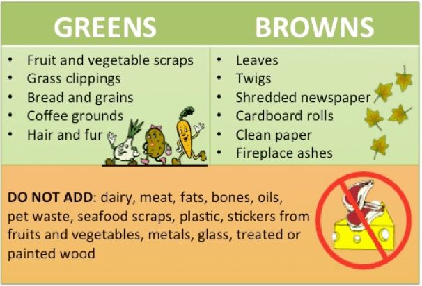 Greens and Browns of Composting